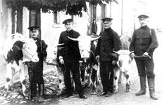 """Von Ochsen und """"schwarzen Schafen"""""""