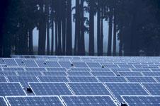 Die Leichen des Solar-Booms