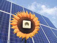 Neue Gebührenwelle für Solarbetreiber