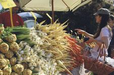 Bauernmärkte im Überblick