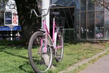 Rosa Räder für alle