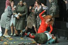 Ein Fuchs in der Oper