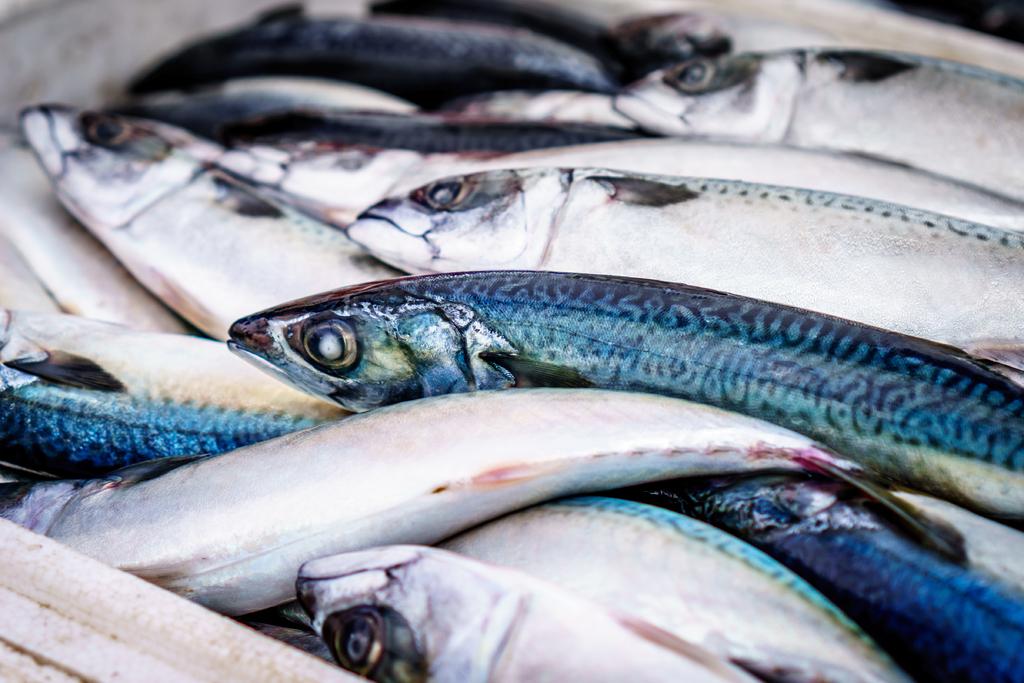 food-market-fish