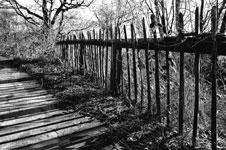 Der lange Schatten der Vertreibung