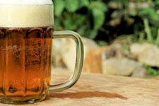 Im Namen des Bieres
