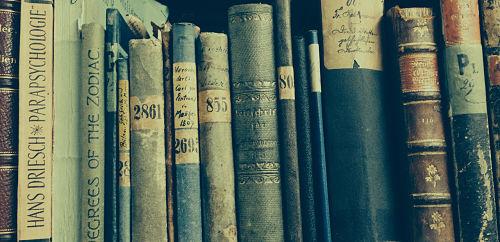 In 12.000 Bänden suchten die Forscher nach Hinweisen auf die ursprünglichen Eigentümer der Bücher.